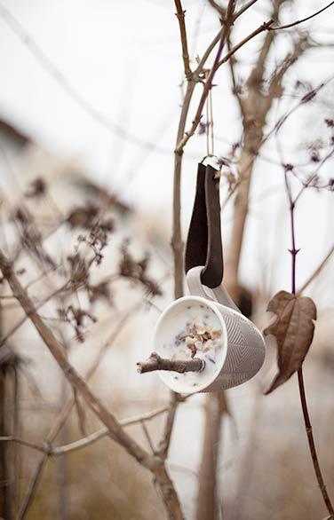 schönes DIY Vogelfutter machen