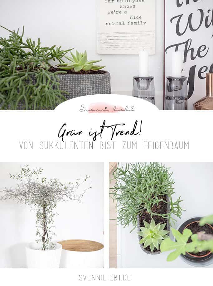 Grün ist Trend! Wohnen mit Pflanzen.