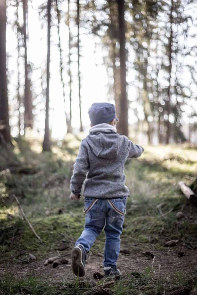 Ein Nachmittag im Wald