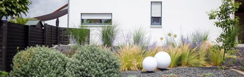 Umgestaltung Vorgarten Ginko und Podestbeet