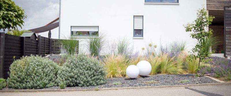Pflanzplanung Vorgarten sonnige Lage - mühelose Pflanzen die wenig Wasser brauchen