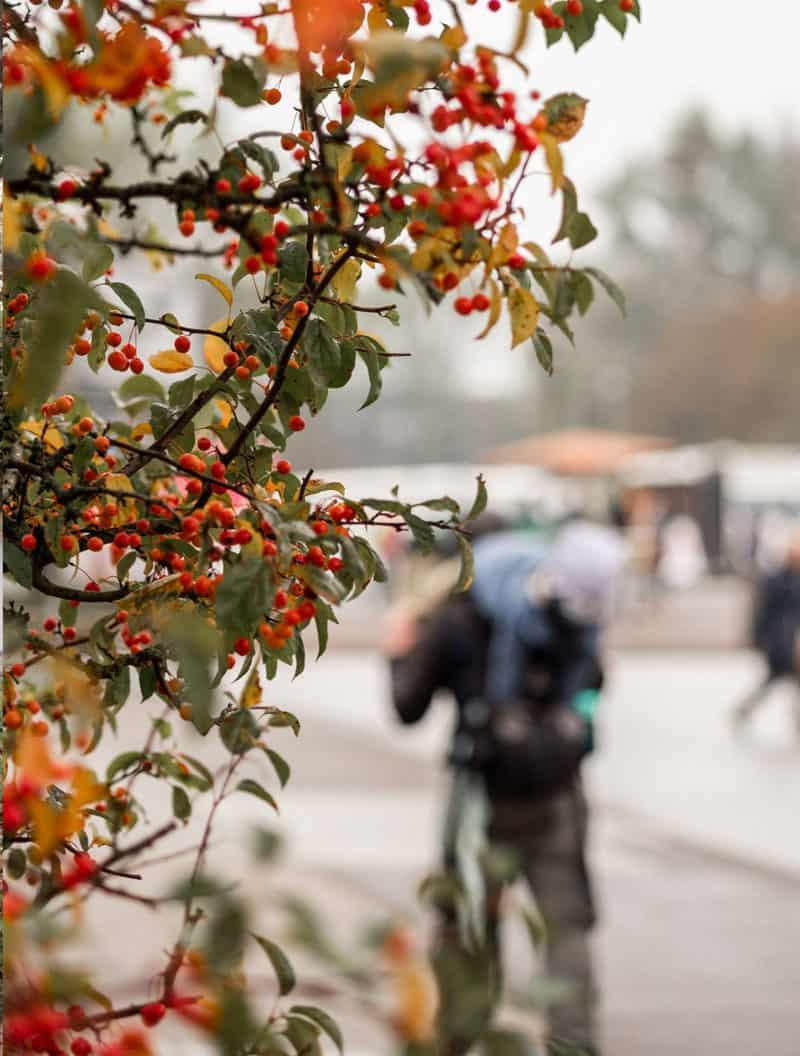 St. Peter- Ording im Herbst erleben