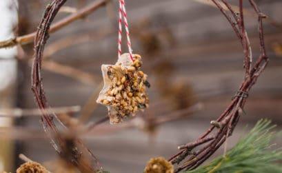 DIY Vogelfutter selber machen
