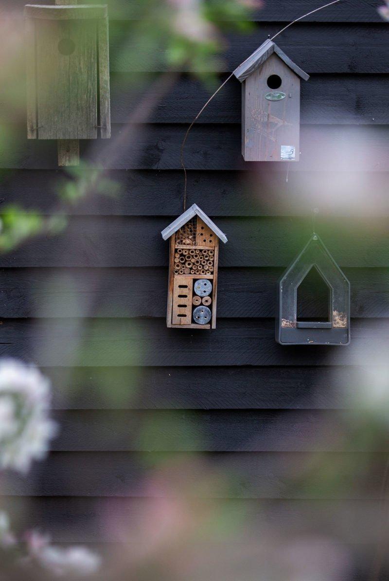 Vogelhäuser im Garten vor einem schwarzen Sichtschutzzaun