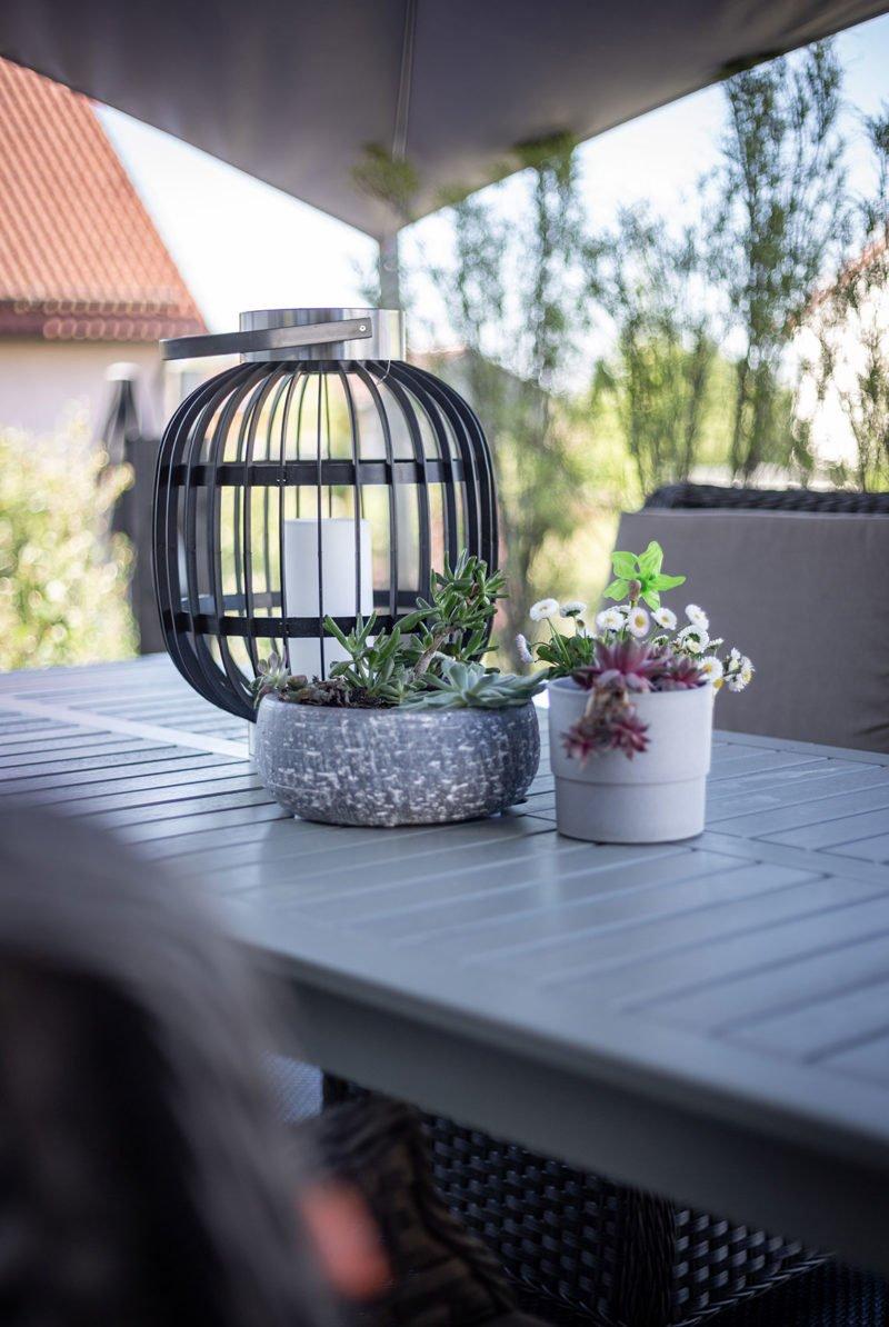 Lieblngsfarbe schwarz im modernen Garten