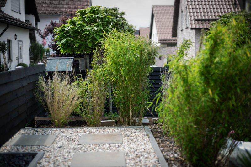 Unsere Idee: Schwarz im Garten bringt Farben zum Leuchten