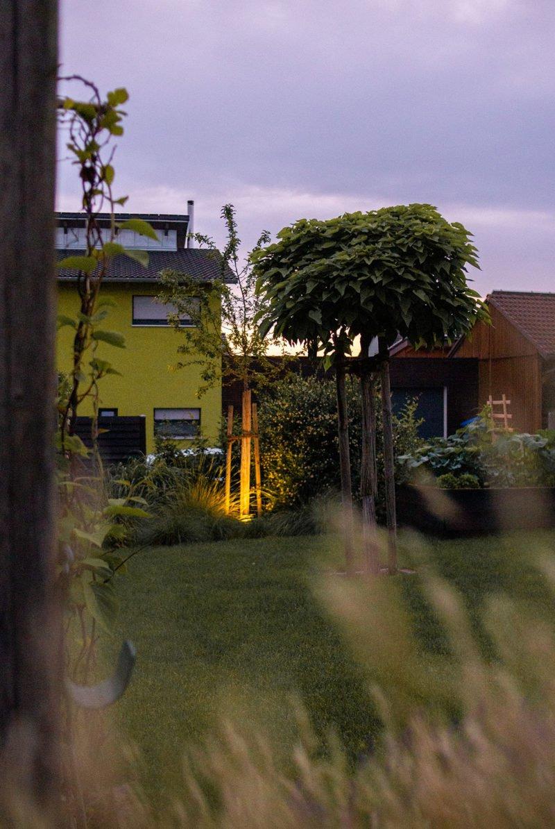 Laue Sommerabende im Juni im Garten